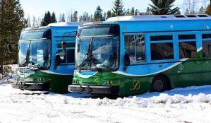 MTA Busses
